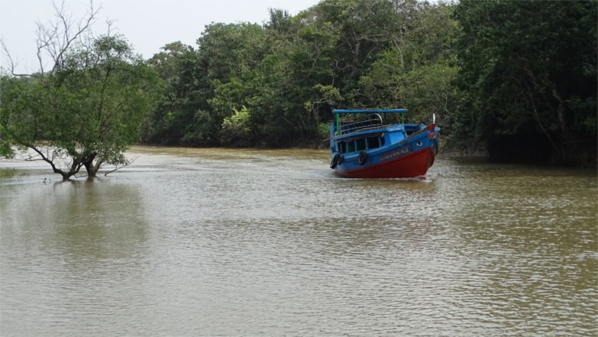 Boat in Khola creek in Bhitarkanika national park, Odisha