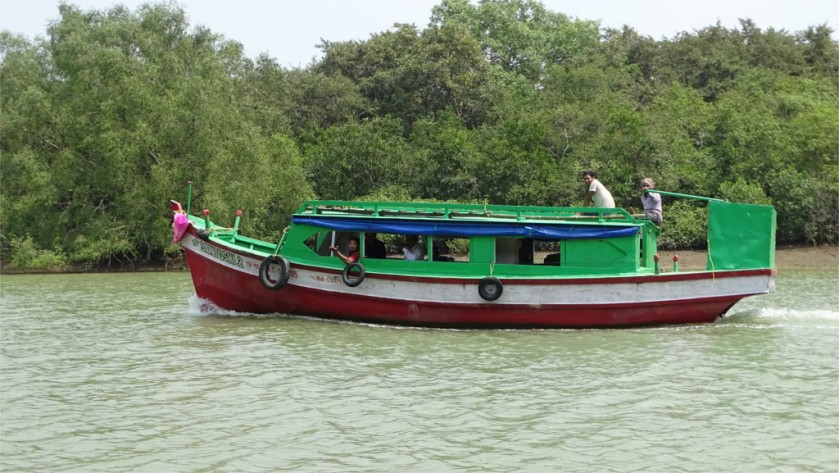 Tourist boats of Bhitarkanika National Park, Odisha