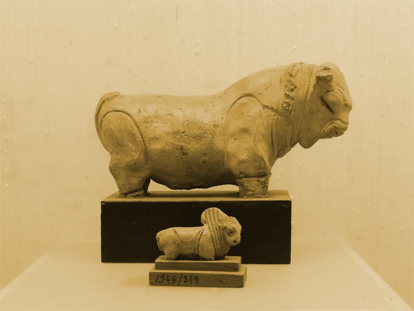 Oxen from the Indus civilization, National Museum, Delhi