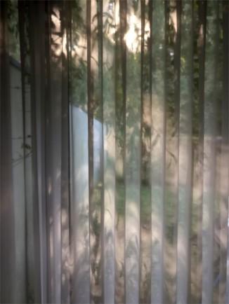 Sunlight on my kitchen curtains